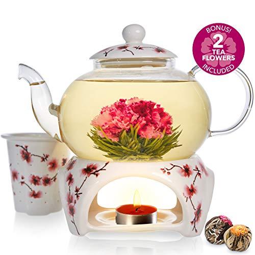 Coffret théière Cherry Blossom de la marque Teabloom - Théière en verre solide (800ml), couvercle en porcelaine, chauffe-théière, infuseur en porcelaine pour thé en feuilles + 2 fleurs de thé
