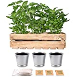 ORTEN Indoor Herb Garden Kit - Planters Wooden Box for Tools and Fruit and Vegetable Storage Sturdy Rustic Smoked Wooden Crate for Kitchen and Shed Storage EU Made