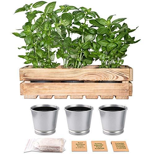 ORTEN Macetas de jardín para interiores y hierbas, caja de madera para herramientas y almacenamiento de frutas y verduras, caja de madera rústica resistente para cocina y cobertizo, hecha en la UE