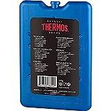 2x boîte Thermos Accumulateur de froid Ice Pack de voyage plat Petit Bloc De Glace...