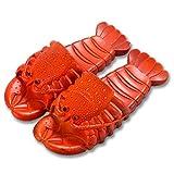 Chanclas Mujer Divertidas Animal Zapatos de Casa Hombre 36-44 Sandalias de Piscina Playa