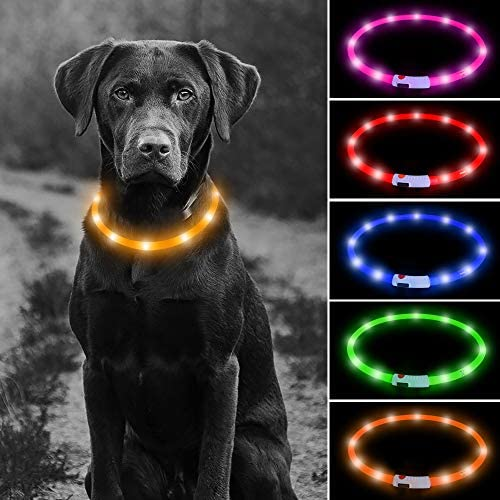 USB Rechargeable LED Dog Collar Glowing Pet Safety Collar Silicone Cuttable Light Up Dog Collar product image