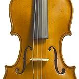 Immagine 2 stentor violino da studio 3