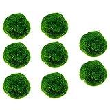 Qingsi - 8 bolas de musgo para acuario, bolas de musgo verde, juguetes de pescado y musgo natural, bola decorativa para acuarios, plantas de algas para decoración de peceras
