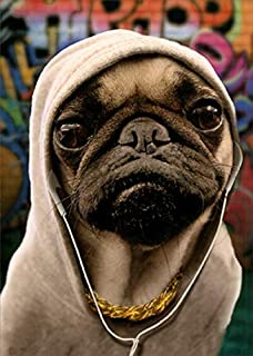 Portal Pug in Hoodie Funny/Humorous Dog Birthday Card