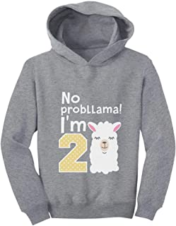 Tstars Gift for 2 Year Old Girl No Probllama 2nd Birthday Toddler Hoodie