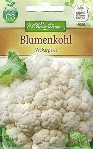 Chrestensen Blumenkohl 'Neckarperle'