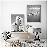 HSFFBHFBH Leinwand Malerei Weißer Hai Schwarz Weiß Poster