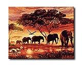 Shukqueen Ölgemälde für Erwachsene, Malen nach Zahlen, Acrylmalerei Elefanten auf der afrikanischen Savanne 40,6 x 50,8 cm, Frameless,Just Canvas