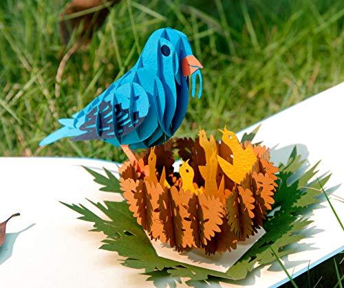 Pop Up Bird Cards