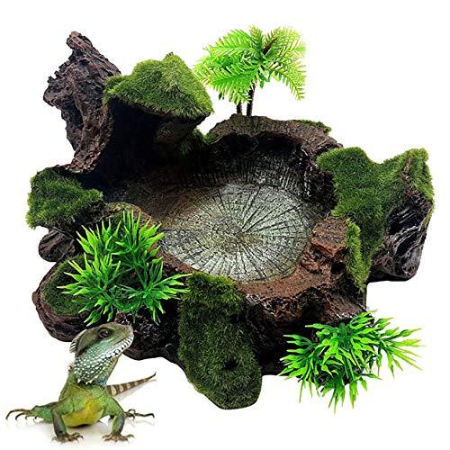 Hamiledyi Künstliche Baumstamm Reptilien Plattform Harz Reptilien Tank Dekor Futter Wasser Schüssel mit Moos für Bartagamen, Eidechse, Gecko, Wasserfrosch, Schlange