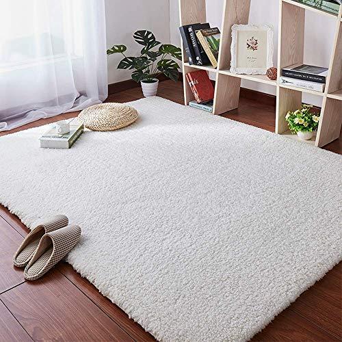 Tapis De Salon Carpet, Tapis Moelleux Et Moelleux, Tapis...
