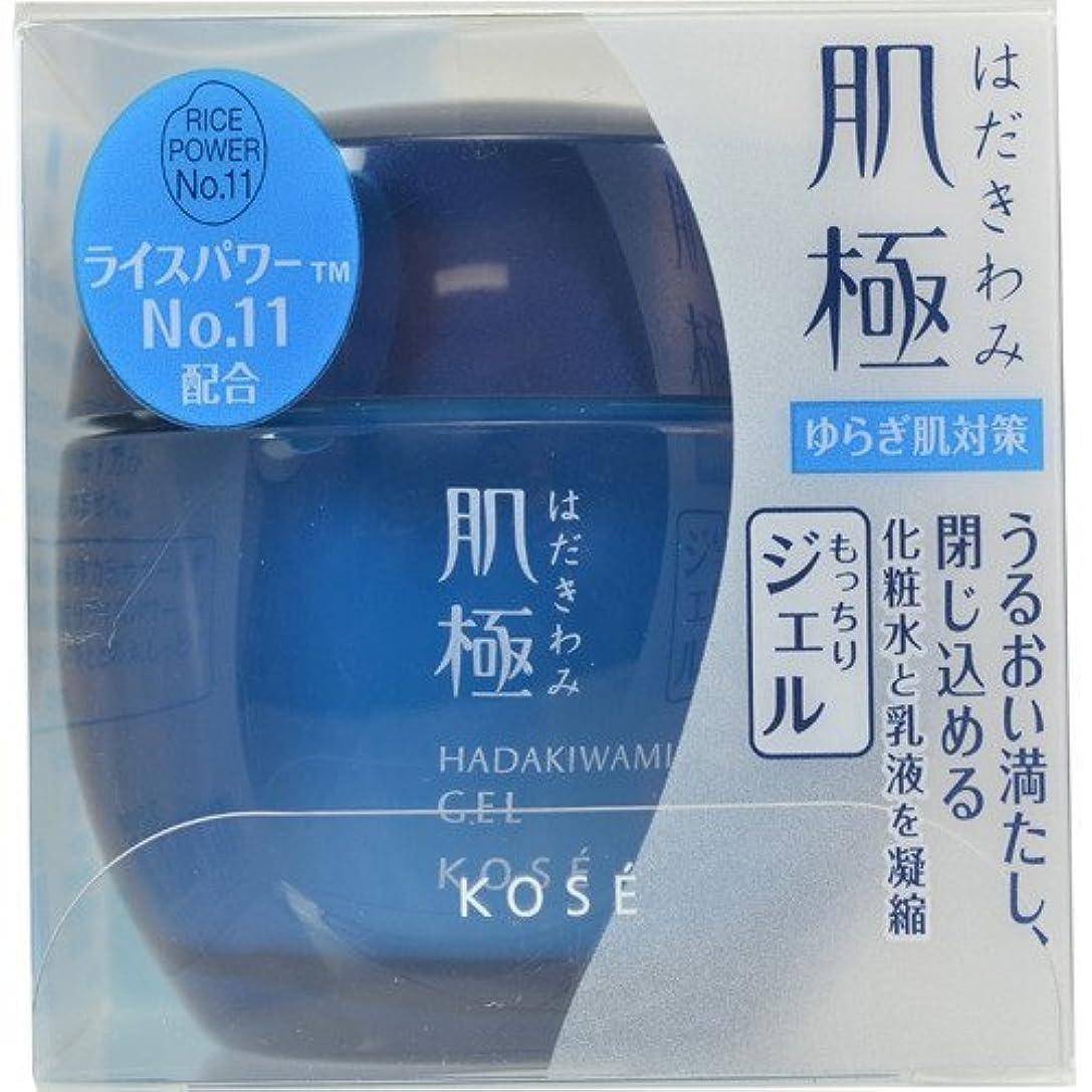 音違法ハイキング肌極 化粧液(ジェル) 40g