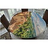 Mantel ajustable de poliéster con bordes elásticos, para mesas ovaladas de 121,9 x 172,7 cm, para eventos en...