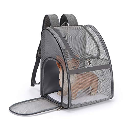 PETCUTE Hundetragetasche Kleine Hunde Atmungsaktiv Transportbox Katze Leicht Haustier Rucksäcke Outdoor Faltbarer Wanderrucksack mit Mesh Fenstertaschen Grau