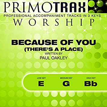 Because of You - There's a Place (Worship Primotrax) [Performance Tracks] - EP