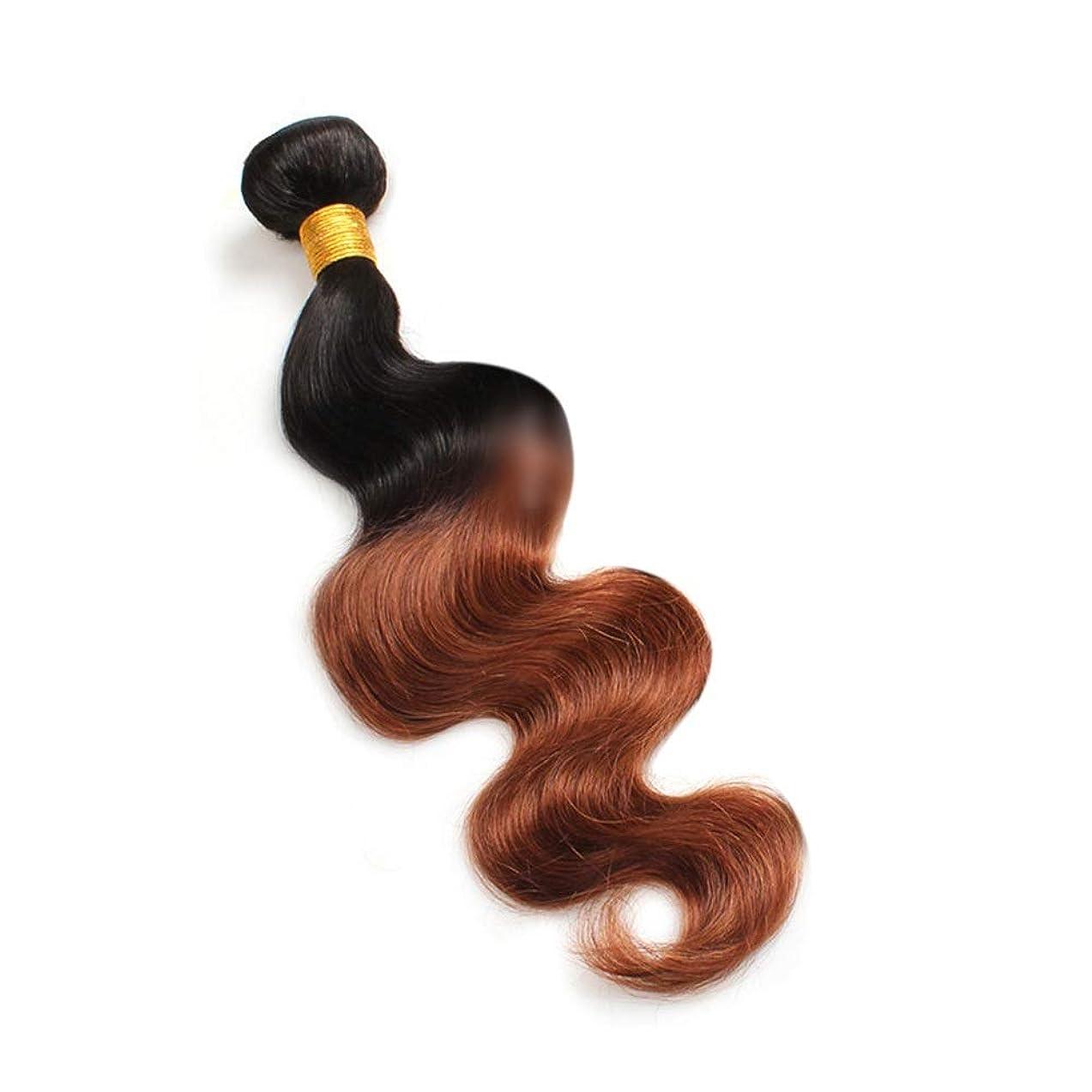 既婚ワンダー放送Yrattary 実体波人間の髪の毛1バンドルナチュラルヘアエクステンション横糸 - 1B / 30#黒と茶色のツートンカラー(100g / 1バンドル)合成髪レースかつらロールプレイングかつら長くて短い女性自然 (色 : ブラウン, サイズ : 24 inch)