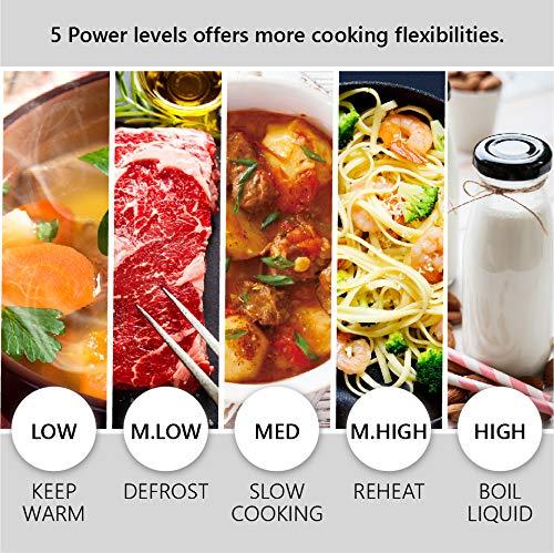 Toshiba MW2-MG20P(WH) 3-in-1 Forno Microonde Grill Combinato, 20 L, 5 Livelli di Potenza Regolabili, Timer, 800 W, Grill 1000 W, Bianco[Classe di efficienza energetica A]