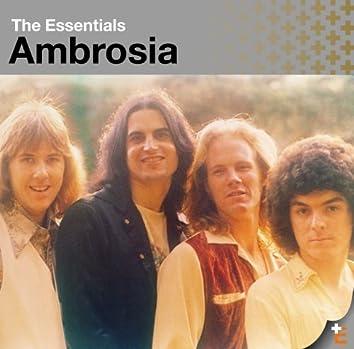 The Essentials: Ambrosia