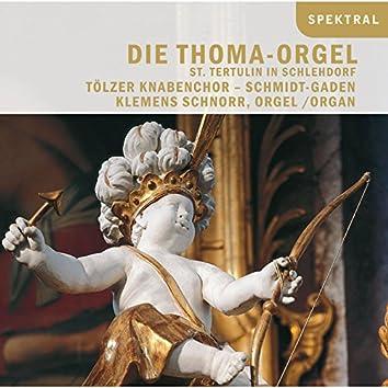 Die Thoma-Orgel St. Tertulin in Schlehdorf