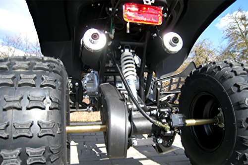 Kinder Quad Warrior (Benzin 125ccm) - 8