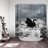 Graues Duschvorhang-Set, weißer Schwan, schwarzer Schwan, schwarz-weiß-grau, grauer Vogel, moderner Stoff, Badezimmer-Dekor, wasserdichter Polyesterstoff, Badezimmer-Zubehör
