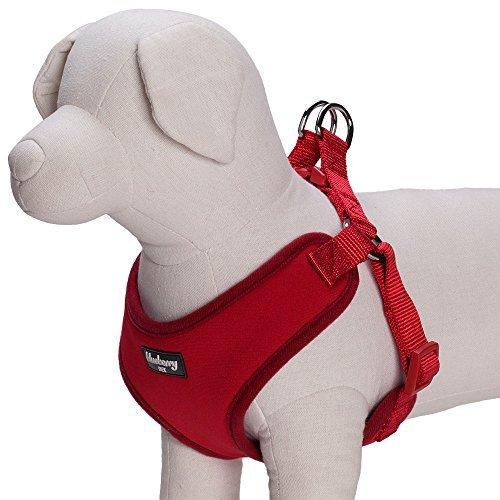 Blueberry-Haustiergeschirr für kleine Hunde / Hundeweste, klassisch, einfarbig, gepolstert