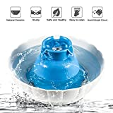 YOUTHINK Cat Water Fountain, 2L Large Capacity Healthy and Hygienic Automatic Ultra Quiet Pet Water...