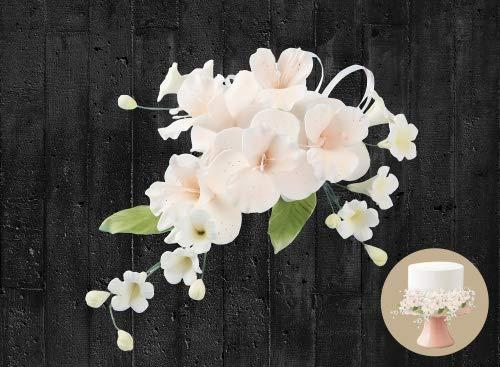 Cake Company Zuckerblumenboquet Orchidee pfirsich 1er Pack (1 x 55 g)
