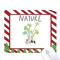 天然植物soloisland絵 ゴムクリスマスキャンディマウスパッド
