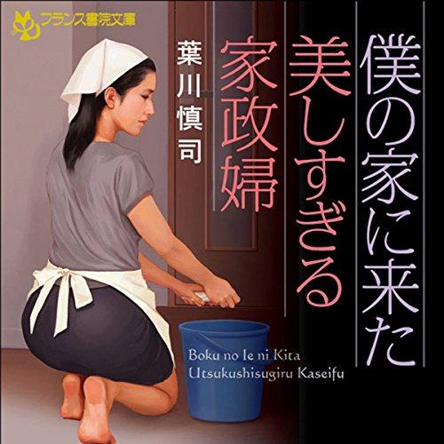 僕の家に来た美しすぎる家政婦 | 葉川 慎司