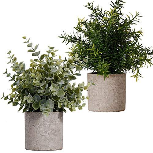 FagusHome Künstliche Pflanzen im Topf 2 Stück Mini Topf Künstliche Eukalyptus Pflanzen Gras Kunststoff Töpfen für Innendekor (A)