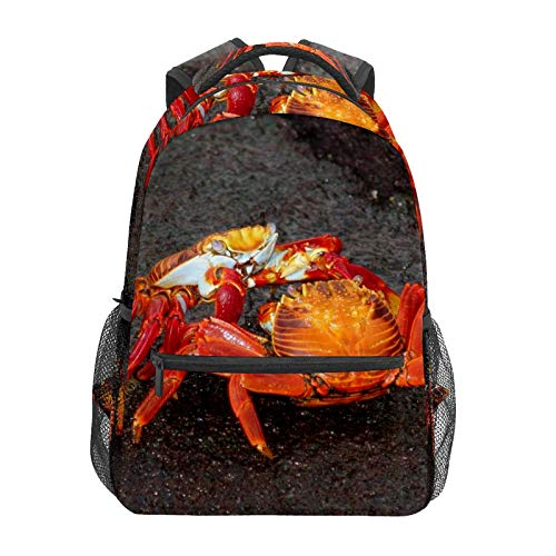 Two Red Crabs Fighting On Grey Sand School Backpack Large Capacity Canvas Rucksack Satchel Casual Travel Daypack for Children Adult Teen Women Men