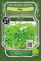 GFP 【有機種子】 チアシードスプラウト (20g) [A302]