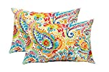 Resort Spa Home Decor Set of 2 Indoor/Outdoor Decorative Lumbar/Rectangle Pillows - Gilford Primary Thin Line Floral Paisley