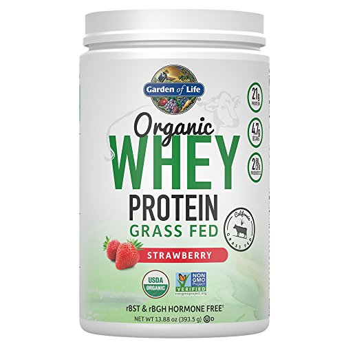 Garden of Life Certified Organic Grass Fed Whey Protein Powder - Strawberry, 12 Servings, 21g California Grass Fed Protein plus Probiotics, Non-GMO, Gluten Free, rBST & rBGH Free, Humane Certified