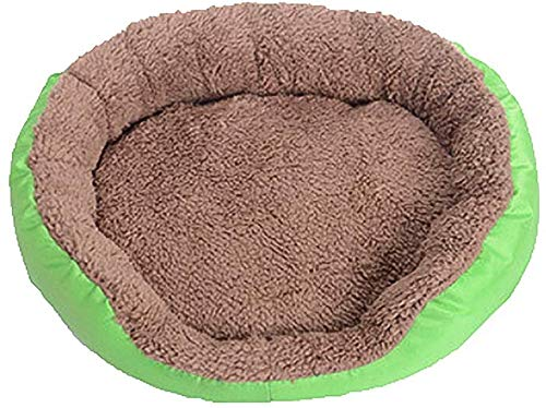 YLCJ zacht hondenbed, comfortabel bed voor dieren, karamel gekleurd nest gevoed voor huisdieren, pluche bank grot benodigdheden voor huisdieren, kat hond mand, warm huis, gemakkelijk schoon te maken (kleur: blauw, grootte: L (68x50x10cm)), L(68x50x10cm), Groen