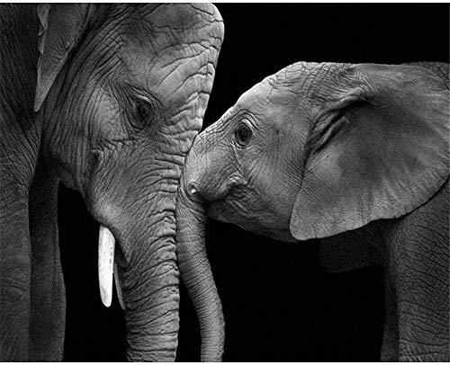 ygghj 1000 Piezas Rompecabezas-Dos Elefantes En Blanco Y Negro 70X50Cm Rompecabezas para Niños Adultos Juego Creativo Rompecabezas Navidad Decoración del Hogar Regalo
