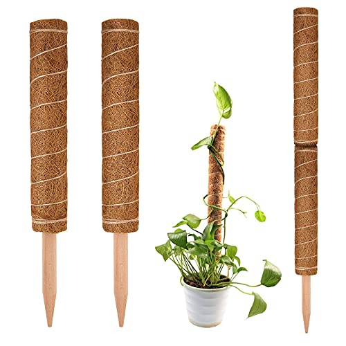 Kokos Totempfähle Rankhilfe Blumenstab Moos Stick Kokos Rankstäbe Pflanzstab Kokos Moos Pole Rankhilfe Natürlicher Kokosfaser Verlängerbar zum Klettern in Zimmerpflanzen Dekoration 30 cm 2 Stück