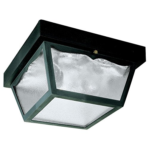 Westinghouse Lighting 6682300 2-Light Porch Clear Glass Panel