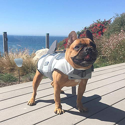 Hifrenchies Dog Life Jacket Shark Swimming Vest Pet Safety Swimsuit Floatation Life Vest for French Bulldog (L, Shark)