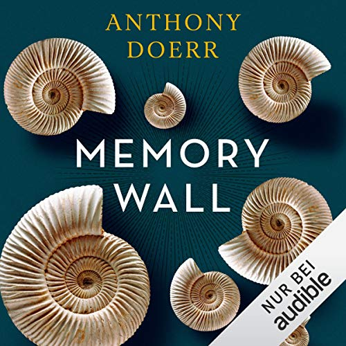 Memory Wall  By  cover art