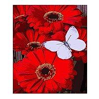 sesemaoの有名な油絵の複製、抽象的な色の壁画、吊り下げられた絵画、防水性の キャンバスの赤い花-額装_30X40cm