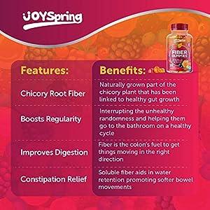 Fiber Gummies for Kids - Kids Fiber Gummy - Yummy Fiber for Kids - Helps with Constipation, Regularity & Immune Support - Safe & Healthy Gluten Free Kids Fiber Supplements - Orange and Berry Flavor