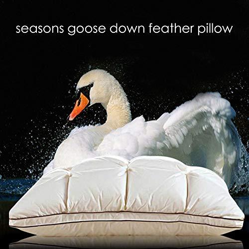 Consejos para Comprar Almohadas de pluma de ganso los 10 mejores. 14