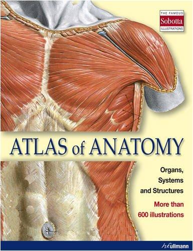 Atlas of Anatomy (Ullmann)