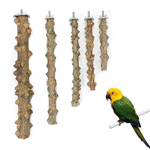 zfdg Posatoi in Legno, 5 Pezzi Posatoi in Legno di Uccelli, Trespoli Naturali del Pappagallo, Posatoi Naturali, per Accessori per Appollaiati Gabbia per Uccelli Pappagallo (10-30 cm)