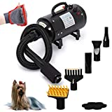 Free Paws Dog Dryer 4.0 HP 2 Speed Adjustable Heat Temperature...