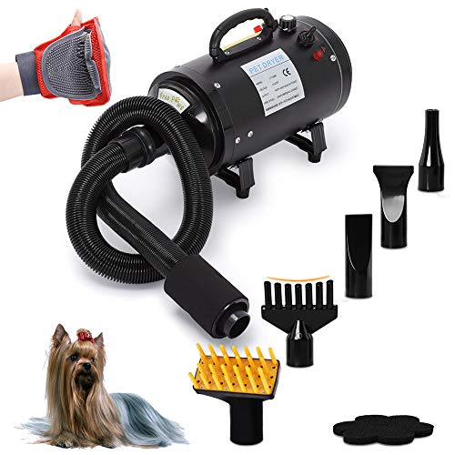 Free Paws Dog Dryer 4.0 HP 2 Speed Adjustable Heat Temperature Pet Dog Grooming Hair Dryer Blower Professional with 5 Different Nozzles and a Shower Massage Glove (Black)