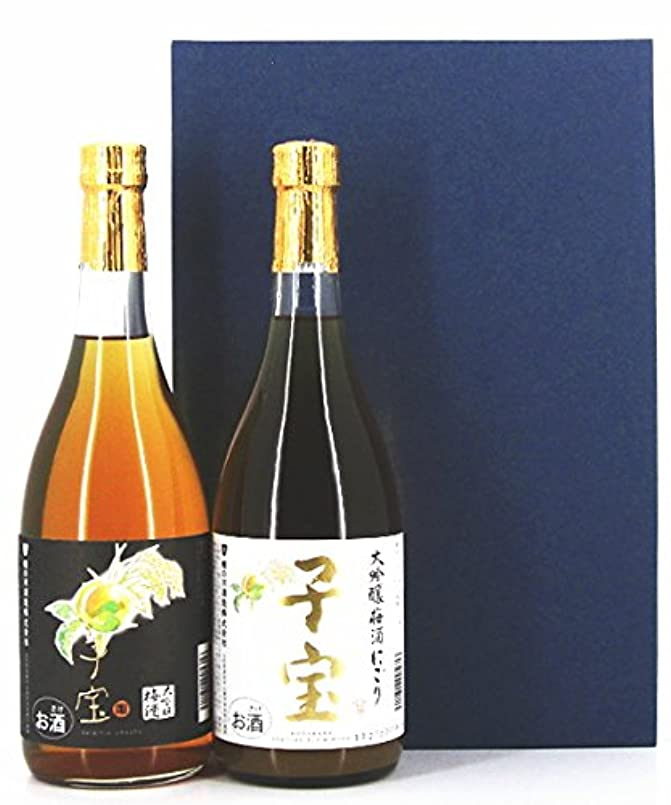 チューリップしなやかな無人梅酒 ギフト セット 子宝 大吟醸梅酒 720ml×2本セット